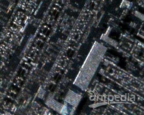 光学显微镜下的电视机场行扫描集成电路