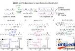 脂质体学的最终边界:不饱和脂类异构物的深度分析