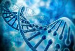 三分钟了解4代基因测序技术