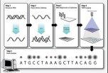 单分子测序在肿瘤基因检测中的6大应用