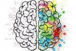 炎癥小體對大腦神經元的影響與個體行為障礙的關系