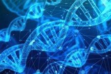 SciTalk質譜創新云講堂|代謝組學研究:聚焦高質量數據采集與分析的奧秘