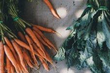 20200408 食品与农产品中重金属及有害元素检测技术