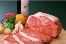 20210319 動物源性食品質量安全檢測技術